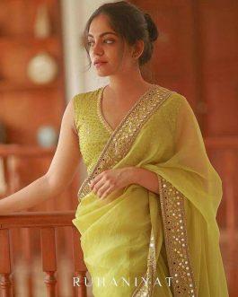 Organza Silk With Embroidery Work Saree