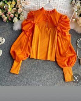 Stylish Puff sleeves top